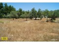 antalya-dosemealti-land-plot-for-sale-to-build-your-dream-house-mansion-small-20