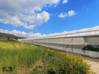 Antalya Korkuteli range, Farm for sale 22.000 m2, greenhouses, house